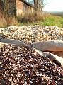 Z čeho pro Vás poltáře vyrábíme: bio pohankové a bio špaldové slupky