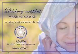 Dárkový certifikát 3 000 Kč